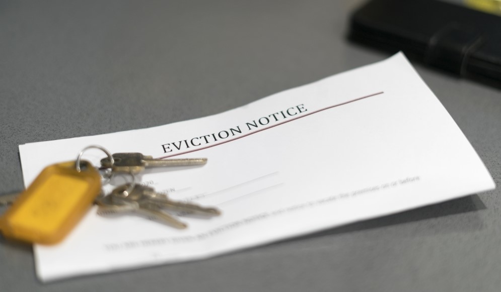 """No-cause"" evictions should be halted under CDC eviction moratorium, legal group says"